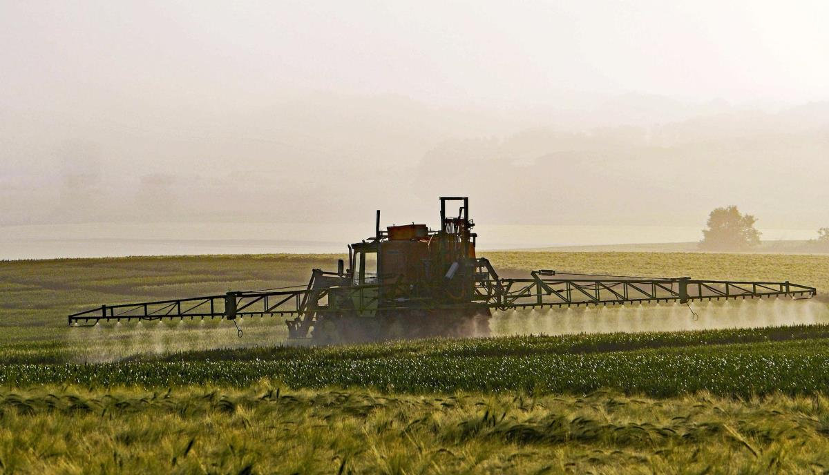 Glyphosate: safety of residue levels reviewed