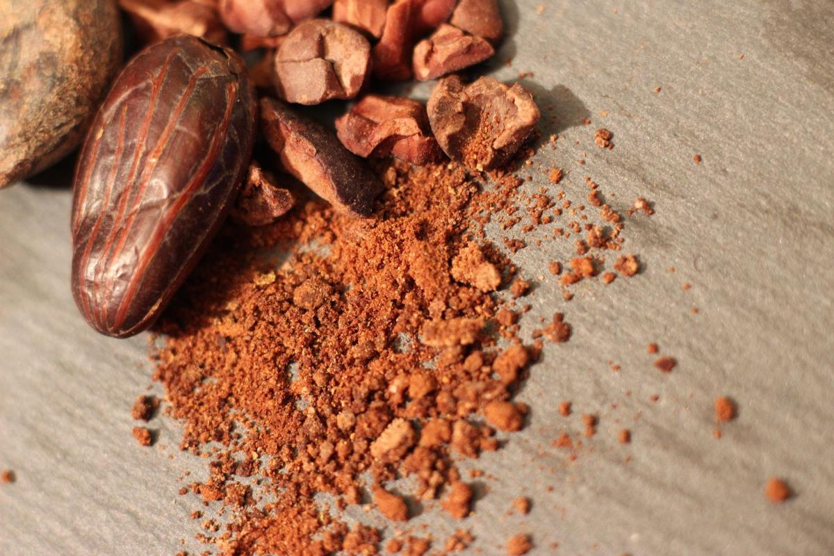 Decline in cocoa prices raises concerns over farmers' future within the sector