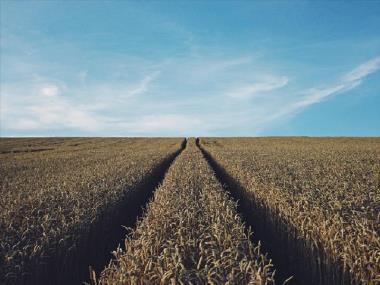 Αγροτική Οικονομία