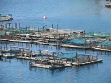 Αποτέλεσμα εικόνας για μίσθωση θαλάσσιων και λιμναίων υδάτινων εκτάσεων