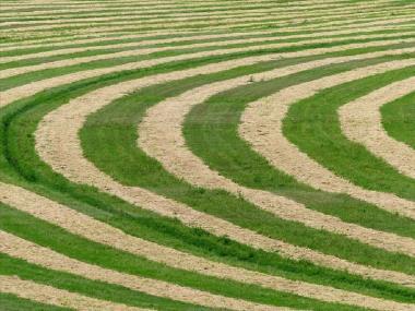 Αγροτική Επικαιρότητα